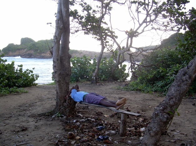 local-sleeping-at-the-beach