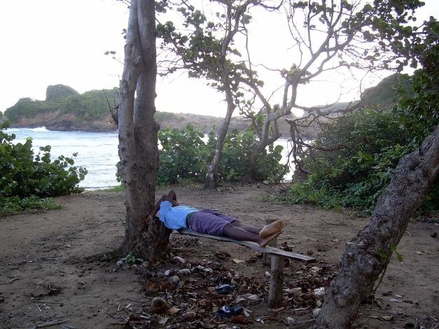 local-sleeping-at-the-beach