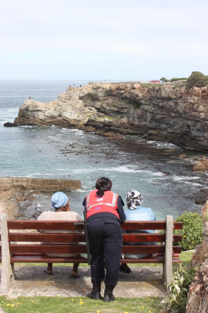 Whale watching by the locals in Hermanus
